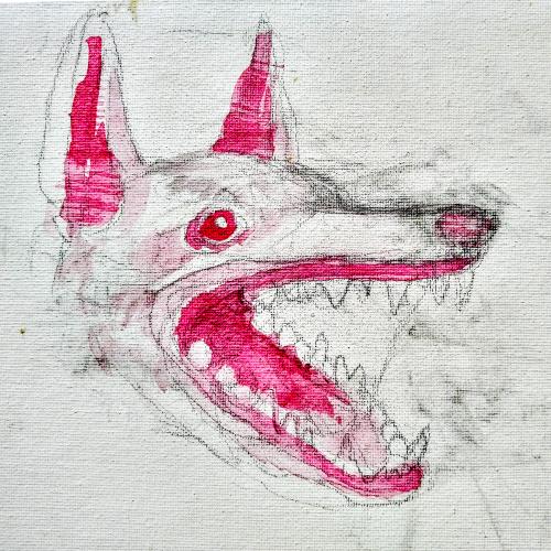 CAB_Dog